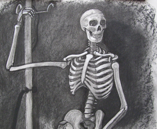 Detail of a Skeleton Drawing by Kristine R Synowka